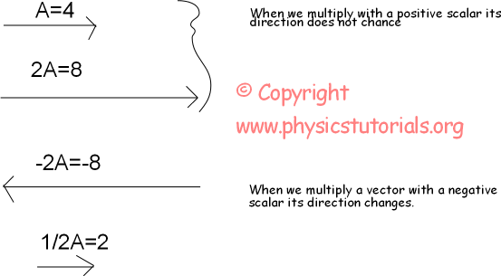 multiplying vector with a scalar